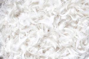 almohada de plumas